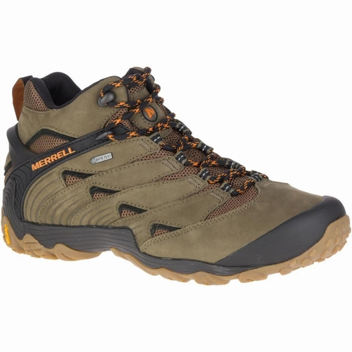 Cham 7 Mid GTX, Dusty Olive