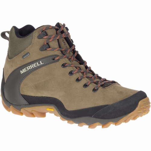 Chameleon 8 Leather Mid GTX, Olive